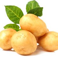 新鲜土豆大果9斤装 云南高山农家现挖马铃薯应季蔬菜一级洋芋