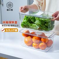Daisy Leaf 菊之叶 日本冰箱保鲜盒沥水L号收纳盒水果蔬菜食品储物盒1个装