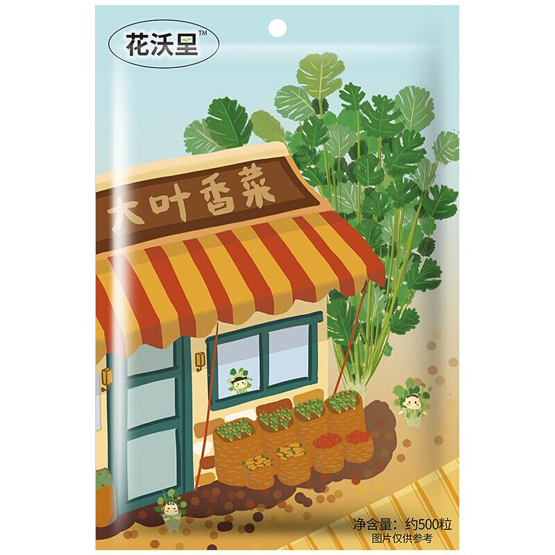 花沃里 大叶香菜种子 四季蔬菜种 家庭阳台盆栽/庭院种植/田间栽种 约500粒/袋