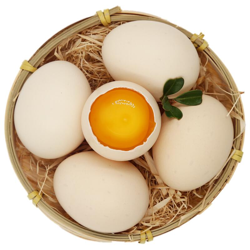 土记 农家正宗散养土鸡蛋新鲜虫草鲜鸡蛋生鲜 40枚 柴鸡蛋笨鸡蛋 当天现捡