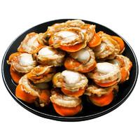 鱻谣 新鲜冷冻去壳带黄扇贝肉1000g 海鲜火锅煲粥烧烤食材生鲜贝类可做蒜蓉粉丝扇贝2斤装