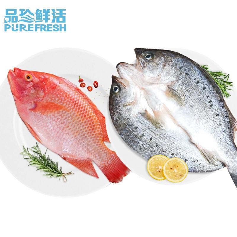 品珍鲜活 三去红星斑鲈鱼(去鳞去鳃去内脏)生鲜 鱼类 1条白蕉海鲈鱼+3条红星斑