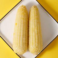 天勤粒粒净 新鲜天勤粒粒净有机农场非转基因10支香甜真空装糯玉米新鲜玉米棒