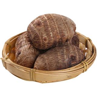 颐果仙 山东牛奶小芋头新鲜香芋头 5斤