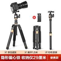轻装时代 Q555P相机三脚架 单反微单佳能尼康摄影摄像