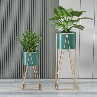 镜立方 北欧室内铁艺爬藤花架子客厅阳台简易绿植造型落地式花盆栽置物架