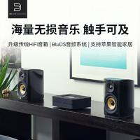 BLUESOUND POWERNODE 2i功放机家用音响hifi数字解码