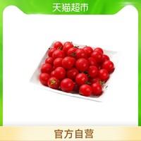 千禧500g/份圣女果新鲜即食水果果肉厚实