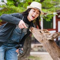 上海送簽 日本三年多次個人旅游簽證