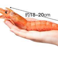 大洋世家 阿根廷船冻红虾 L1(10/20)2Kg