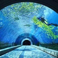 酒店特惠:亲子海洋馆!三亚海棠湾天房洲际度假酒店1-3晚