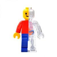4D MASTER X JASON FREENY 乐高积木人透视骨骼模型