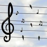《1.5小时掌握编曲基础乐理》课程
