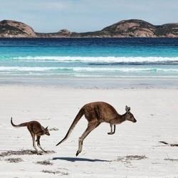 南方航空 全国多地-澳大利亚5地7-30天往返含税机票