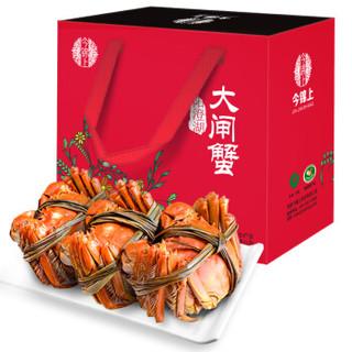 今锦上 阳澄湖大闸蟹 现货 公蟹4.0两/母蟹2.8两 4对8只装