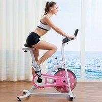 SUNNY HEALTH&FITNESS P8100/SF-B1203 家用动感单车