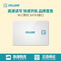 特科芯(TEKISM) K2 120G SATA3 固态硬盘