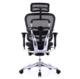 Ergonor 保友办公家具 金豪+E 人体工学电脑椅