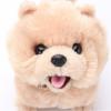 IWAYA 依娃亚岩谷 一起玩耍系列 电子宠物狗 博美狗 103元