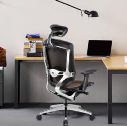 Ergoup Marrit-致炫 高端人体工学电脑椅