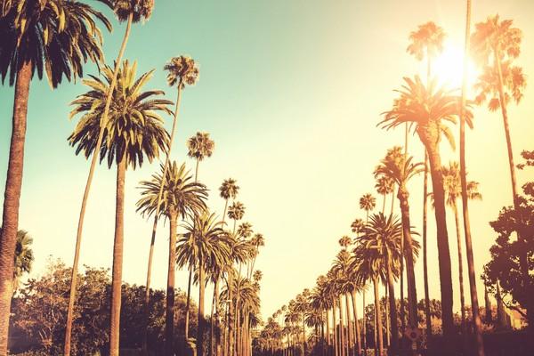 全国多地-美国纽约+华盛顿+拉斯维加斯+洛杉矶11日跟团游
