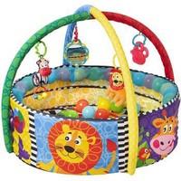Playgro 派高乐 婴幼儿五合一健身毯 +凑单品