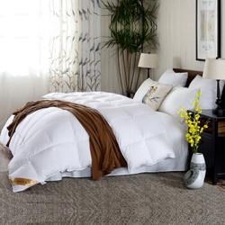 鸿润 优雅宝贝 被芯家纺 全棉90%白鸭绒被 轻盈保暖双人羽绒被 冬被 被子 白色 填充量1.1kg  200*230cm