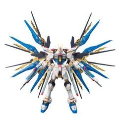 高达Gundam模型玩具 RG版14强袭自由敢达0185139