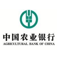 """移动端:中国农业银行""""手机银行""""APP"""