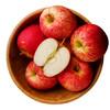 泉盛隆 苹果 陕西白水红富士 12个 70-75mm 总重约2kg 19.7元