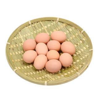 限PLUS会员: : 百年栗园 林地散养 无抗柴鸡蛋 30枚 礼盒装