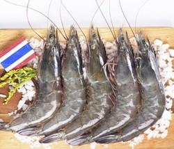 海外直采 活冻泰国白虾/女王虾 400g 16-20只/盒 原装进口