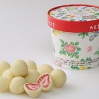 六花亭 草莓巧克力 115g