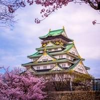南方航空 上海-名古屋+大阪6天往返含税机票