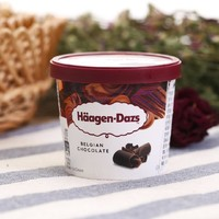 Häagen·Dazs 哈根达斯 比利时巧克力冰淇淋 100ml 杯装