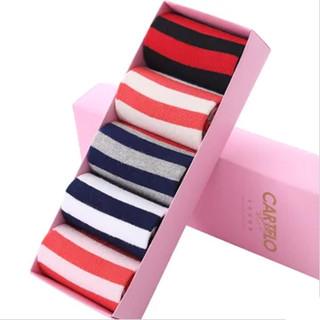 CARTELO 卡帝乐鳄鱼 女士条纹棉袜 5双装