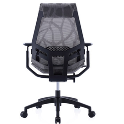 Ergonor 保友 基尼迪亚smart  电脑椅
