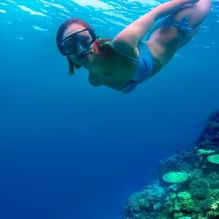 """全国出发-马尔代夫白雅湖(又名""""比亚度"""")岛7天5晚自由行"""