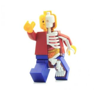 4D MASTER X JASON FREENY 乐高积木人透视骨骼模型(11寸 超大版)