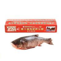 查干湖鱼 冷冻有机胖头鱼 冬捕三号 12.5-13斤+越南黑虎虾400g*2件