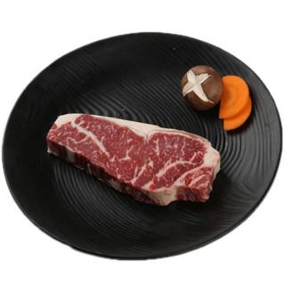 Tender Plus 天谱乐食 澳洲M3西冷牛排