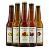 瑞可德林 女士低度果酒Cider 鸡尾酒330mlx6瓶 6支混装 *2件 238元(合119元/件)