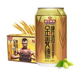 珠江啤酒(PEARL RIVER)10°P金麦穗 330ml*24听整箱装