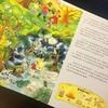 《德国专注力养成大画册》(6册套装)