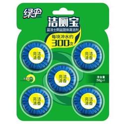 绿伞蓝泡泡马桶清洁剂5粒 洁厕宝 *2件