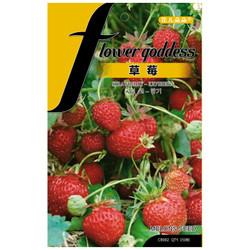花儿朵朵 草莓观果蔬菜种子 150粒/袋 *20件