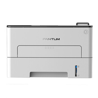 PANTUM 奔图 P3060DW 黑白激光打印机 (灰色)