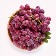 14日12点:国产红提 1kg装 新鲜水果