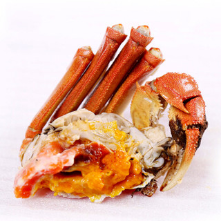 今锦上 大闸蟹 公3.7两-4.0两+母2.3两-2.6两 4对8只