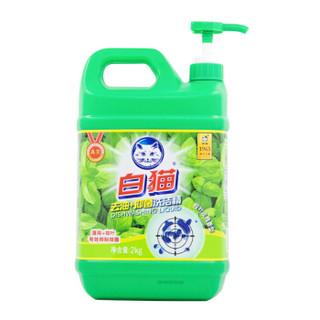 Baimao 白猫 去油+抑菌洗洁精 (2kg)